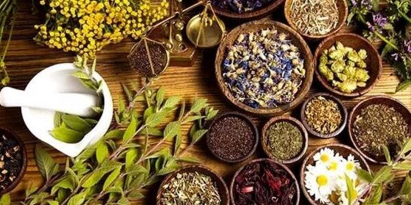 Settore agroalimentare: piante officinali